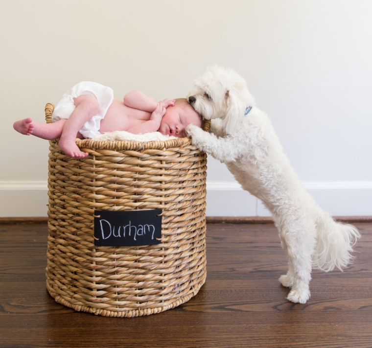 Newborn Lifestyle In Home Session, Heather Durham Photography Birmingham Alabama